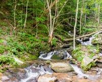 Little Amicalola Creek Royalty Free Stock Image