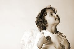 Little angel. Portrait of a cute boy with wings Stock Photos