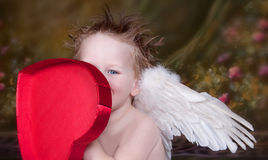 Little Angel Boy. Little Boy with blue eyes and angel wings, flowered background Stock Images