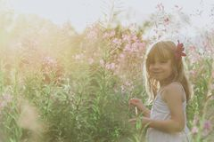 Little angel in flowers Royalty Free Stock Images