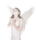 Little angel girl Stock Images