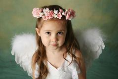 Little Angel Girl. Beautiful young girl wearing angel wings and flower halo with smile happy expression Stock Photography