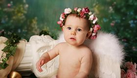 Little Angel Girl. Beautiful young girl wearing angel wings and flower halo with somber expression Stock Images
