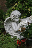 Little angel prayers Stock Photography