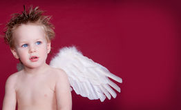 Little Angel Red Background. LIttle Blue Eyed Angel, Red background with space for text royalty free stock images