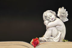 Little angel sleeping Royalty Free Stock Image