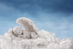 Little angel in the wings Stock Image