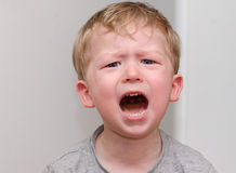 The little angry crying blond boy closeup Royalty Free Stock Images