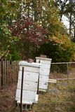 A little apiary in the fall Royalty Free Stock Photo