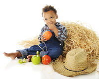 Little Apple Farmer Royalty Free Stock Photography