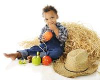 Little Apple Farmer Royalty Free Stock Photography