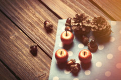 Little apples and pine cones Royalty Free Stock Photography
