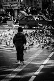 Little Arabic Boy In Central Square. A little Arabic boy among pigeons on the central square located in Cinarcik town which is the district of Yalova city Stock Image