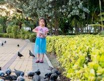 Little Asian baby girl feeding birds Royalty Free Stock Image