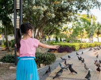 Little Asian baby girl feeding birds Royalty Free Stock Photography