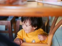 Free Little Asian Baby Girl Sitting And Playing / Exploring Under A Dinning Table During A Meal With Her Family At A Restaurant Stock Photos - 155688373