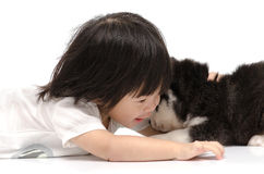 Little asian baby hugging Siberian husky puppy. On white background isolated stock image
