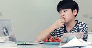 Little asian boy eats strawberries and Using Notebook at Home. Causal Lifestyle stock video footage