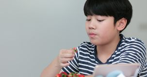 Little asian boy eats strawberries and Using Notebook at Home. Causal Lifestyle stock video