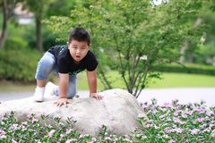 Little asian boy. Outdoor portrait of a little asian fat boy,Play in the park royalty free stock image