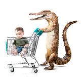 Little asian boy in shopping cart with crocodile Stock Image