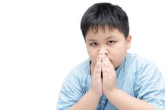 Little asian boy spiritual peaceful praying isolated. On white background, horizontal, copy space Stock Photography