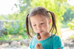 Little girl eating chocolate. Little asian girl eating chocolate Royalty Free Stock Photos
