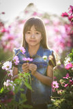 Little asian girl in flower fields Royalty Free Stock Photos