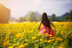 Little asian girl in flower fields Royalty Free Stock Image