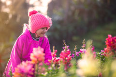 Little asian girl with flower fields Royalty Free Stock Photography
