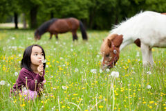 Little Asian girl in the park and horses Stock Photo