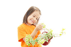Little Asian girl with a plant Royalty Free Stock Photos