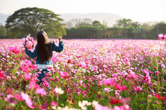 Little asian girl standing in flower fields Royalty Free Stock Image