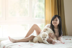 Little asian playing with siberian husky puppies Stock Photography