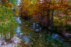 A Little Babbling Brook with Stunning Fall Cypress Trees royalty free stock photography