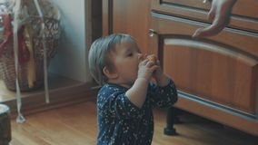 Little baby asking persimmon, then try to eat it stock video footage