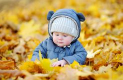 Little baby in the autumn Stock Images
