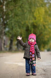 Little baby in an autumn park. Nice little baby in an autumn park Stock Image