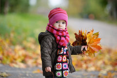 Little baby in an autumn park Stock Image