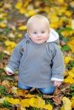 Little baby in the autumn park Stock Photos