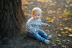 Little baby at the autumn park Stock Photography