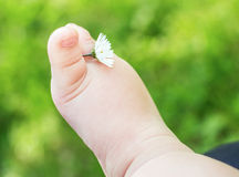 Little baby bare feet with flower on fresh green grass Royalty Free Stock Photos