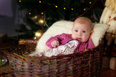 Little baby in a basket under the tree. Little baby in a basket near a Christmas tree for the New Year royalty free stock image