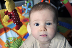 Little baby with big blue eyes Royalty Free Stock Images