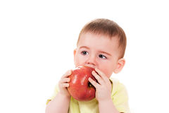 Little baby bites the apple Royalty Free Stock Image