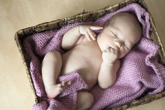 Little baby in the box Royalty Free Stock Photography