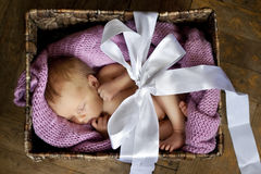 Little baby in the box Stock Photo
