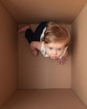 Little baby in the box Stock Images