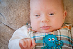 Little Baby Boy Stock Photography