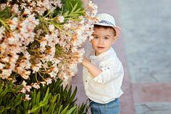 Little baby boy in a hat and shorts in the summer on a backgroun. D of park costs about flower bush Stock Photo